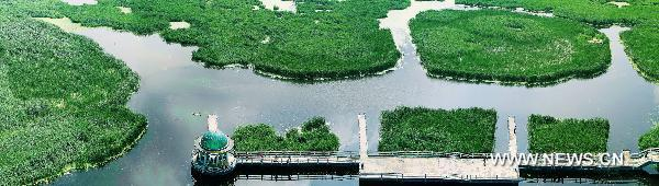 Photo taken on July 10, 2011 shows an aerial view of the Long Feng Wetland, or the Wetland of Dragon and Phoenix in Daqing City, northeast China's Heilongjiang Province. [Xinhua]