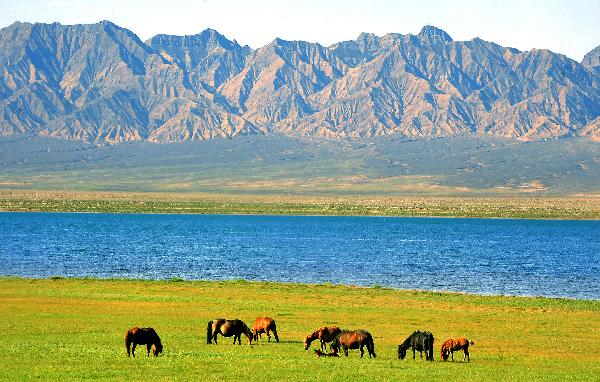 Tourists arrive Qinghai as summer holiday season starts ...