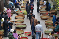 Tea fair in E China 