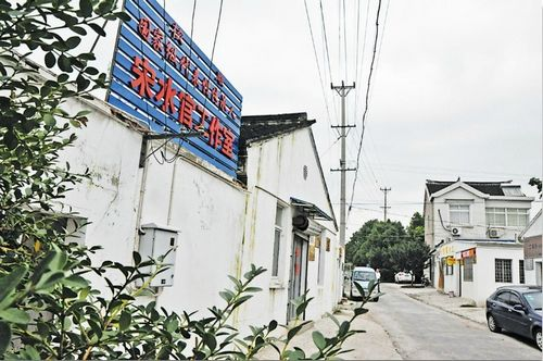 Zhoushan village has made bumper profits from carving crafts.