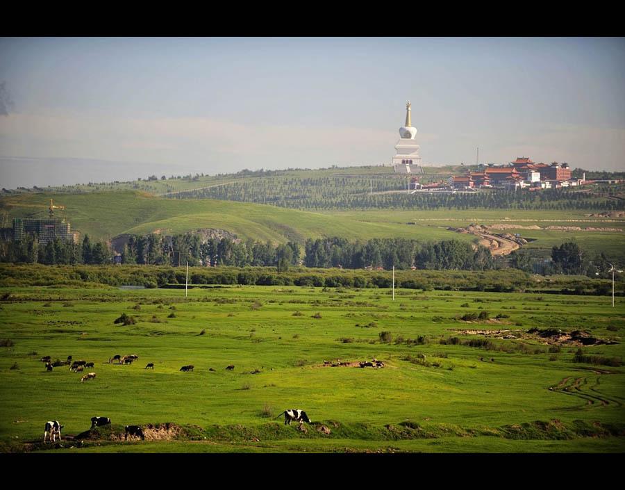 A getaway in Hulunbuir Grassland - China.org.cn