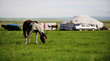 A getaway in Hulunbuir Grassland