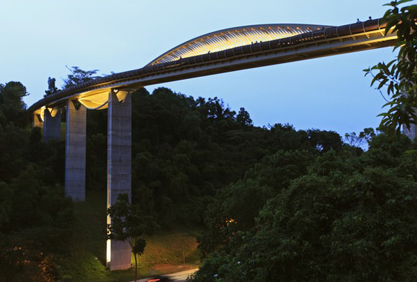 The Henderson Waves Bridge, one of the 'top 11 world's most incredible bridges' by Forbes.