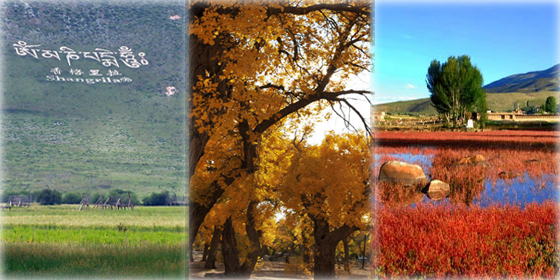 Top 8 October destinations in China