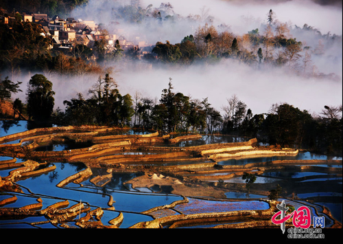 Yuanyang Terrace, one of the 'Top 8 November destinations in China' by China.org.cn.
