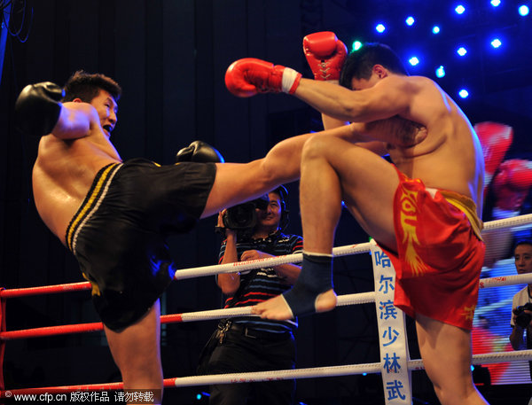 2011 Chinese Sanshou Martial Arts Championship took place in Haikou, Hainan Province on Tuesday, November 1, 2011.
