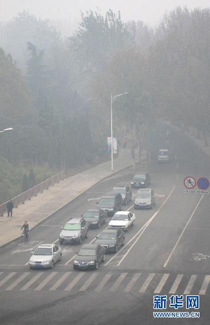 Code blue alert renewed to warn fog in Shandong
