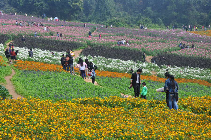 """rural tourism in china Over 70% of chinese urban residents choose rural tourism """"rural tourism is a  major front for domestic tourism and a new channel for."""