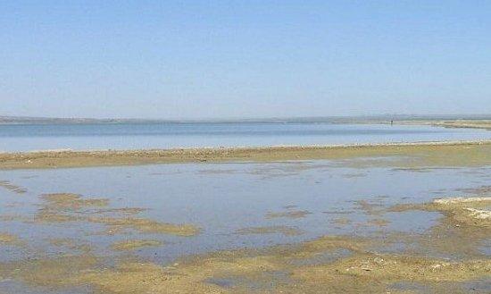 Hongjiannao, China's largest desert lake. [File photo]