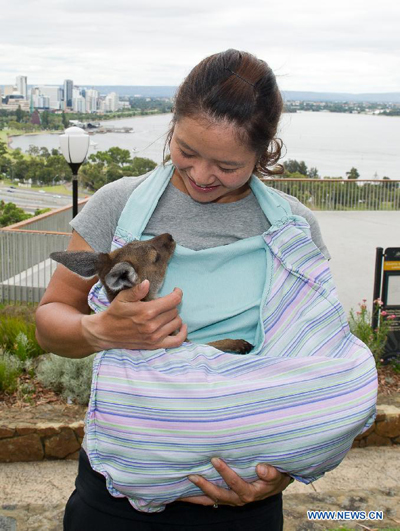 Li Na says 'cheese' with baby kangaroo in Australia