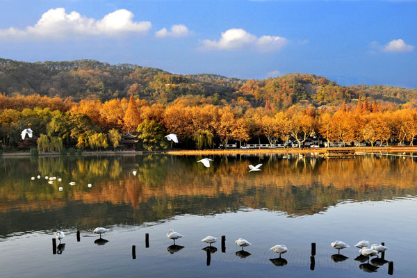 Xixi Wetland Park in autumn. [File Photo]
