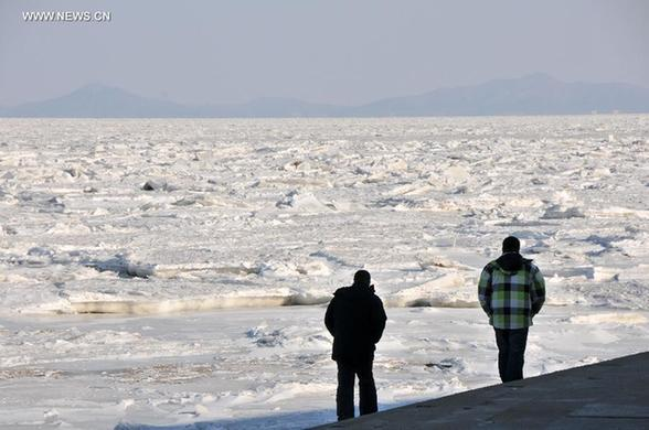 Sea ice off northern China disrupts aquaculture - China.org.cn
