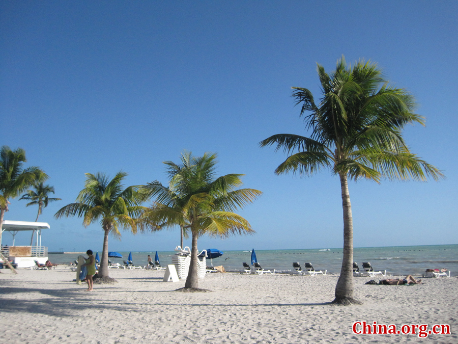 Photo shows the beautiful scenery of South Beach, Miam, Florida, United States. [China.org.cn/Photo by Chen Xia]