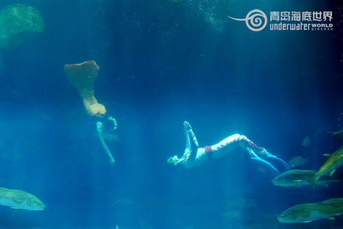 Underwater show on Valentine's Day in Qingdao