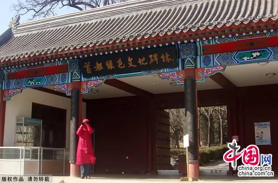 Baiwangshan is the closest forest park to the center of the city, just 3 kilometers northwest of the Summer Palace. With an area of about 2 square kilometers, the park is covered with thick forest and flourishing shrubs. In the spring, the park is beautifully decorated with splendid green foliage. [China.org.cn]