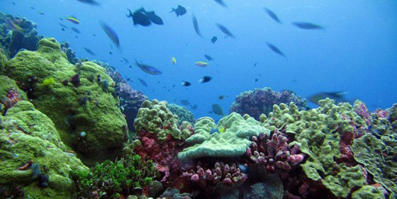 Top 10 largest protected areas in the world