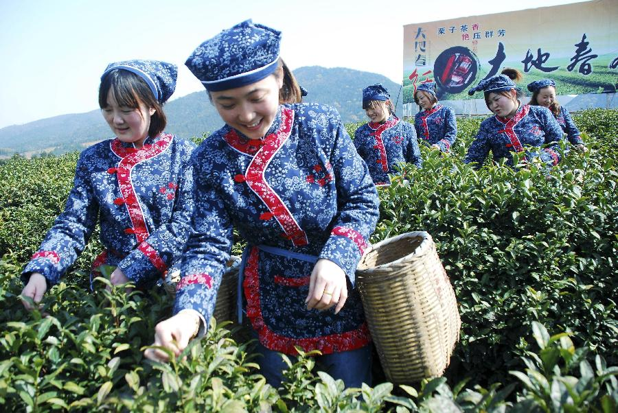 Farmers pick tea leaves during a tea festival marking start of a pick season at Hufu Township of Yixing, east China's Jiangsu Province, March 25, 2012. Merchants, tourists and farmers gathered here to spend the festival Sunday. (Xinhua/Min Xueping)