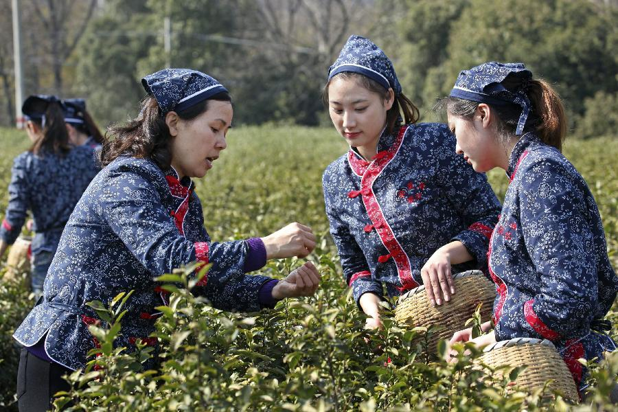 Farmers talk as they pick spring tea leaves during a tea festival marking start of a pick season at Hufu Township of Yixing, east China's Jiangsu Province, March 25, 2012. Merchants, tourists and farmers gathered here to spend the festival Sunday. (Xinhua/Ding Huanxin)