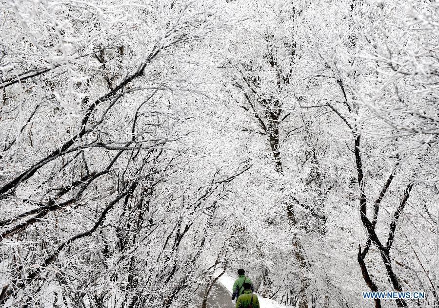 Photo taken on April 12, 2012 shows the snow scenery at Huashan Mountain Scenic Area in Xi'an, capital of northwest China's Shaanxi Province. A snow hit Mt. Huashan on Thursday early morning, bringing charming sceneries to the tourist site. [Xinhua/Tao Ming]