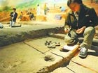 Shandong excavation sheds light on mistery of 2,600 years ago