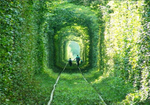 Most fascinating walkways around world