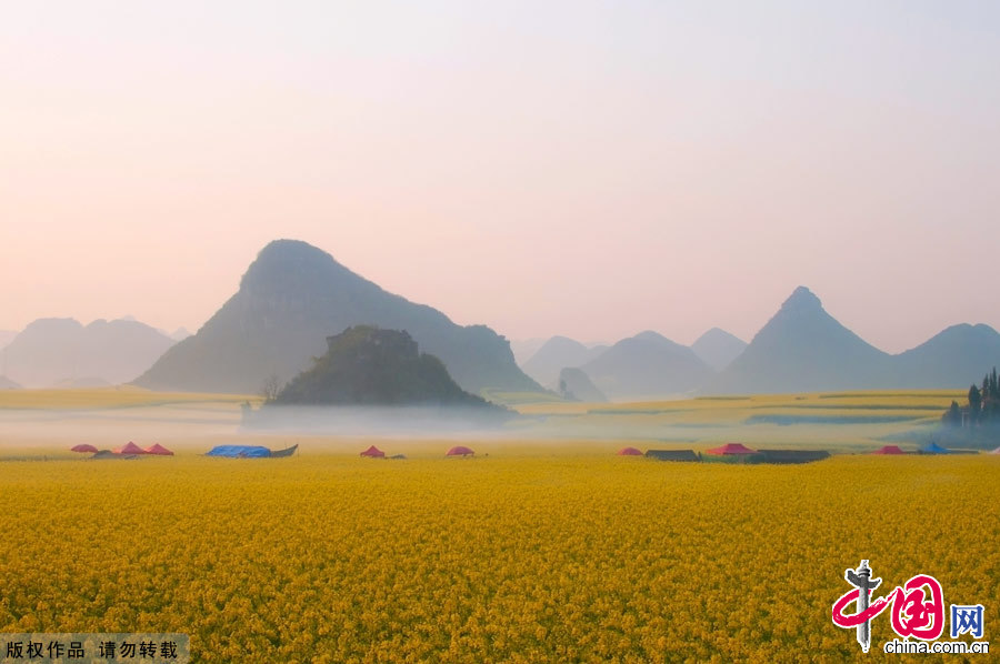 The small county of Luoping lies in the relatively underdeveloped eastern part of the Yunnan Province, neighboring Guizhou and Guangxi provinces. It sits 220 kilometers east of the capital Kunming. Every spring, the entire county will transform into an ocean of canola flowers, attracting thousands of travelers and photographers to enjoy the spectacle. [China.org.cn]