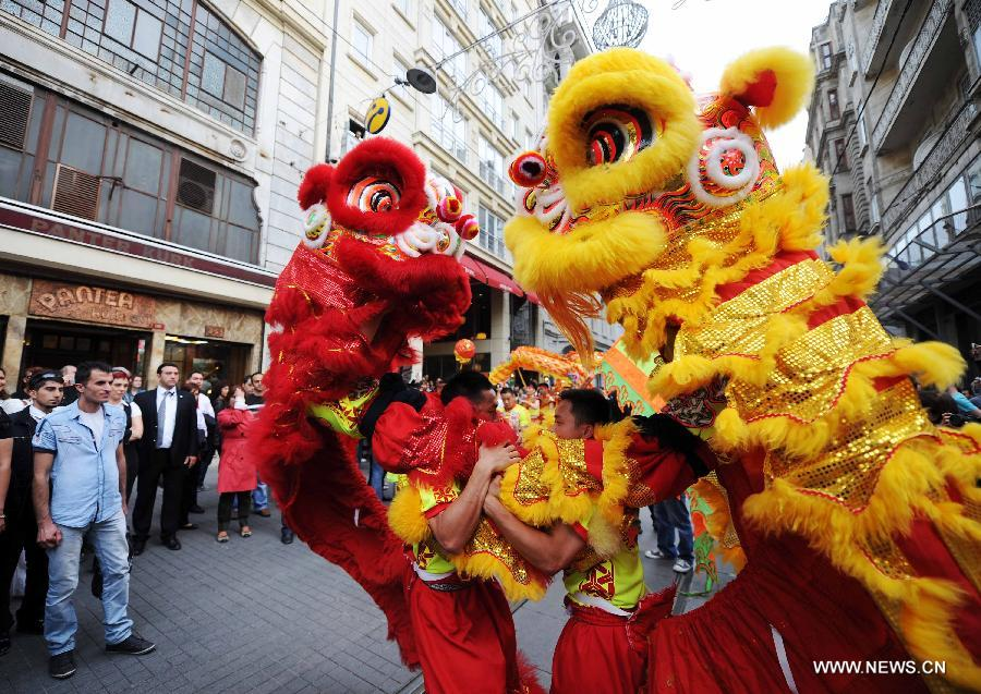 Lion Dancing Lion Dance Performers From