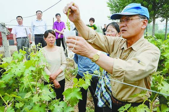 Japanese expert lectures on fruit trees in Shandong