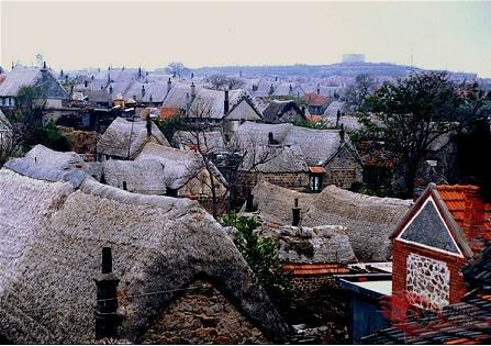 Unique seaweed houses in Shandong