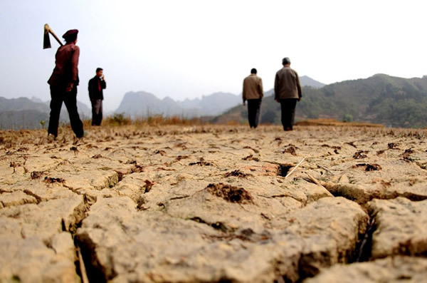 The Democratic People's Republic of Korea (DPRK) is experiencing what experts believe is the nation's most severe drought in living memory. [File photo]