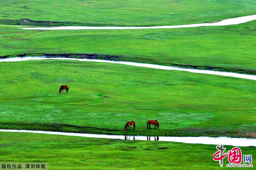 Amazing Hulun Buir Grassland - China.org.cn