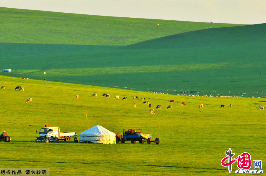 Hulun Buir China  City new picture : Amazing Hulun Buir Grassland China.org.cn