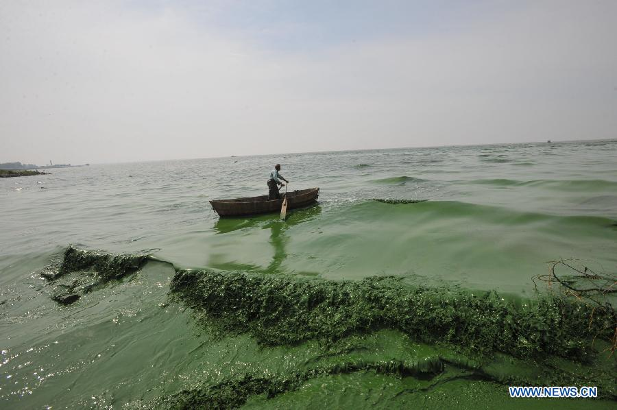 Chaohu China  city images : fisherman paddles in the water of the Chaohu Lake, east China's ...