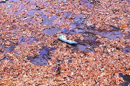 ocean pollutio