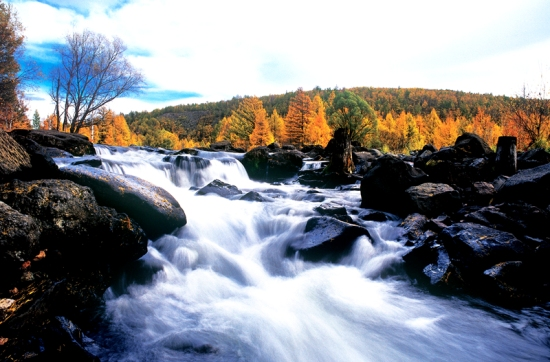 Aershan National Forest Park, one of the 'Top 10 attractions of Inner Mongolia, China' by China.org.cn