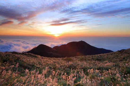 Kết quả hình ảnh cho yangming mountain