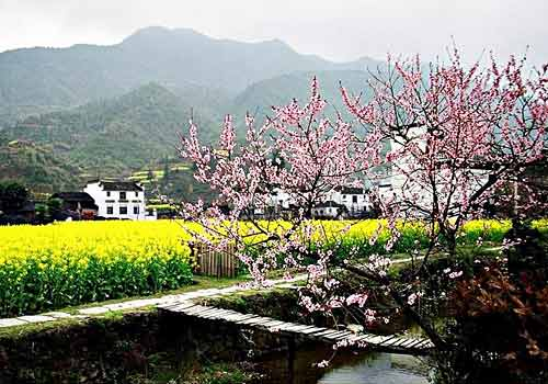 Peach Blossom Land, one of the 'top 10 attractions in Hunan, China' by China.org.cn.