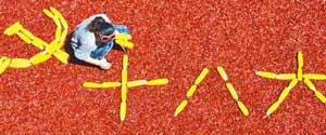 中共十八大10月9日起受理记者采访申请 Media invited to cover 18th CPC national congress