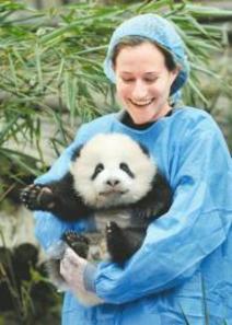 Rebecca and panda cub Oreo. [newssc.org]