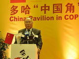 Xie Zhenhua expects Doha to link past with future