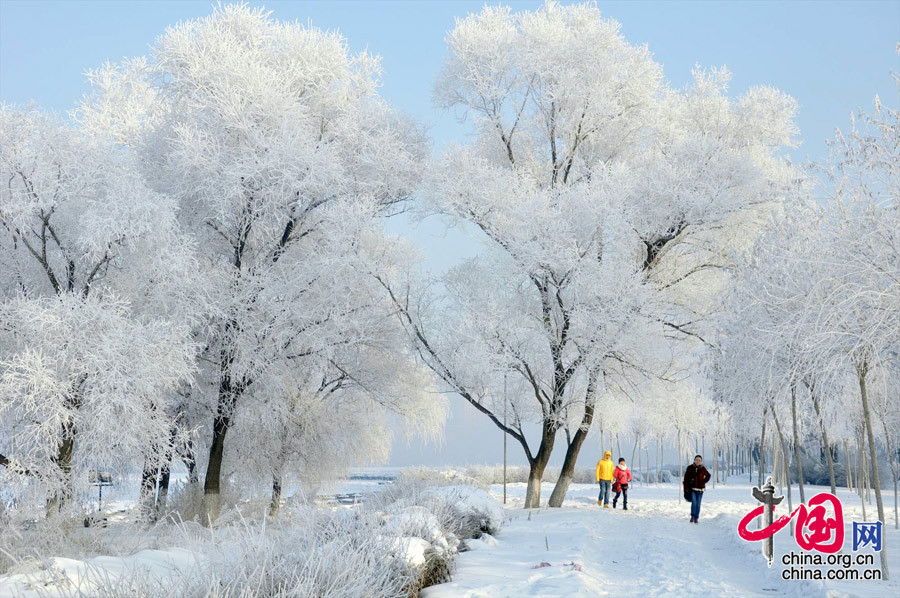 Unique rime scenery along songhua river