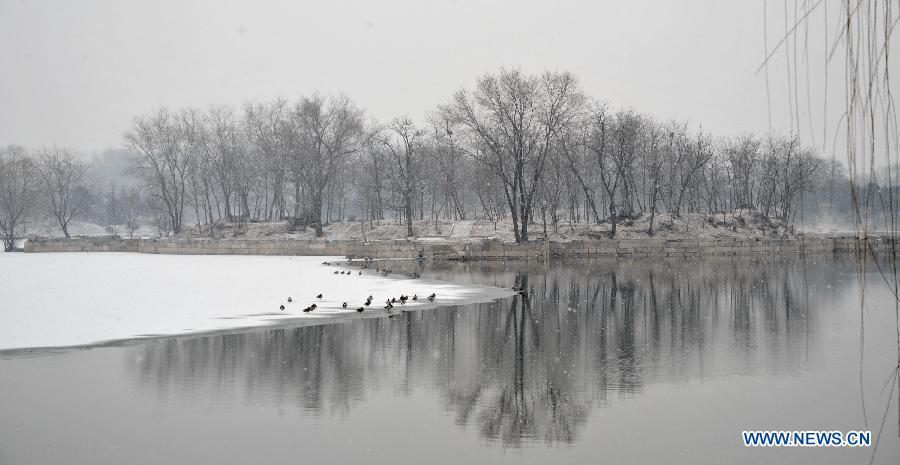 CHINA-BEIJING-SNOW FALL (CN)
