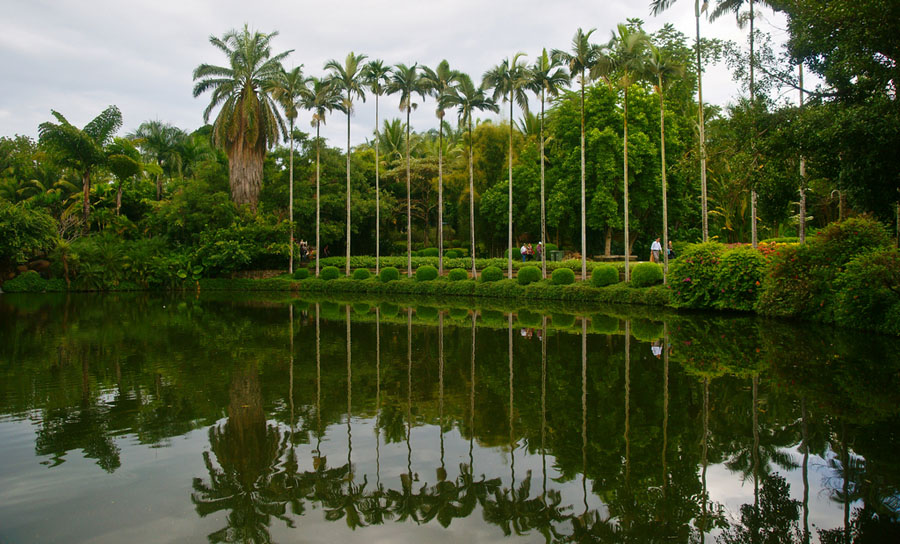 Xishuangbanna China  city images : Xishuangbanna Tropical Botanical Garden in China's Yunnan China.org ...