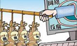 Weibo: An eye on corruption