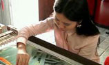 Foreigners take up Han Embroidery