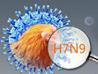Fighting against H7N9 bird flu