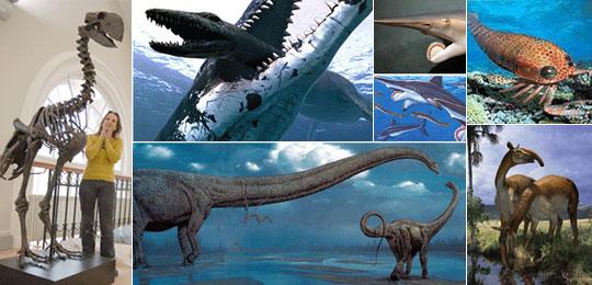 已经灭绝的动物图册 已灭绝的动物 已经灭绝的动物有哪些 马上要灭绝
