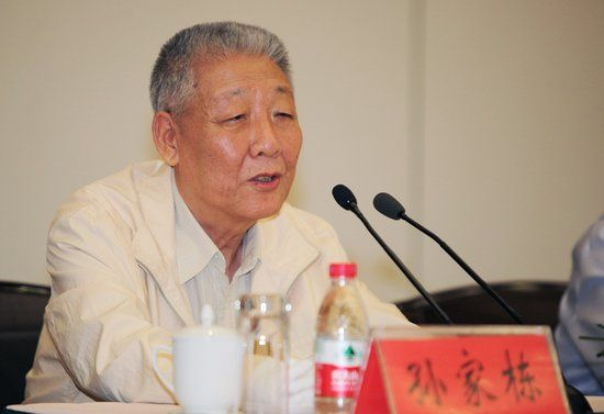 Sun Jiadong, chief designer of BDS and an academician of the Chinese Academy of Sciences.