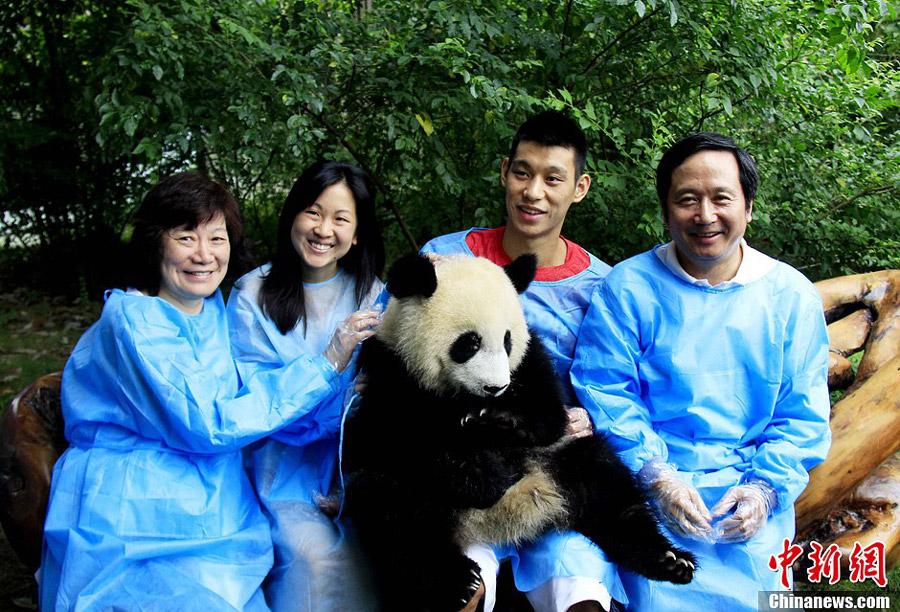 jeremy lin visits chengdu panda base chinaorgcn