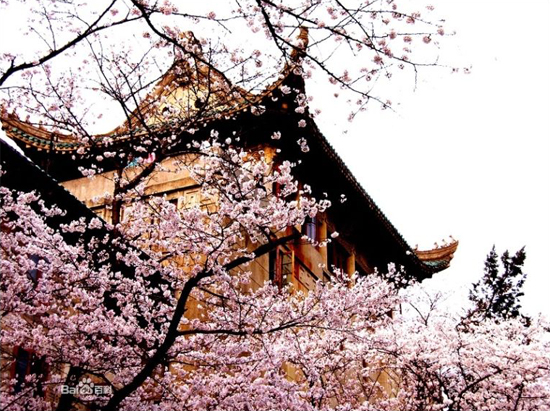 Wuhan University, one of the 'top 10 attractions in Wuhan, China' by China.org.cn.